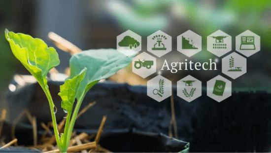 EY report, titled 'Agritech - towards transforming Indian agriculture
